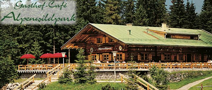 alpenwildpark_verlinkung_2_700x300px