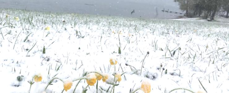 Kalte Überraschung am Tegernsee