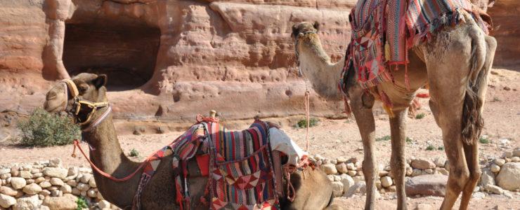 """"""" Jordanien – Mit dem Mountainbike zu Kreuzrittern und Lawrence von Arabien """""""